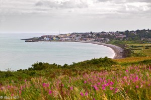 -Wicklow-View-of-Greystones-and-Bay-300x199