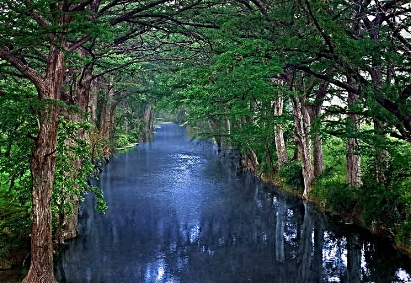 river-of-life (1).jpg