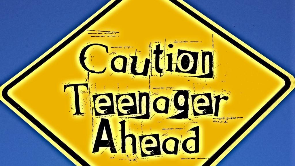 Caution Teenager Ahead signpost