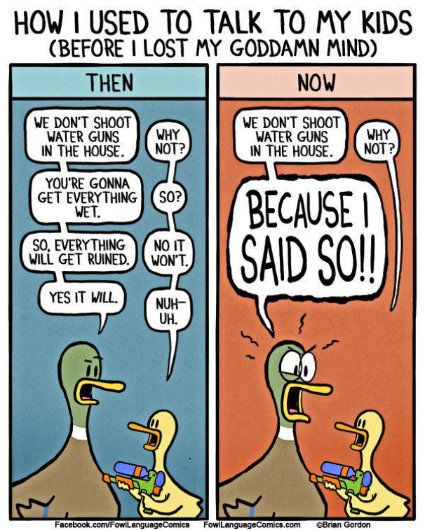 Ducks arguing.jpg